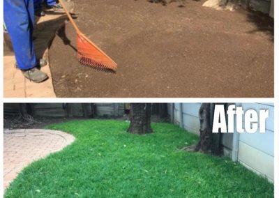 Garden-Talk-Before-After