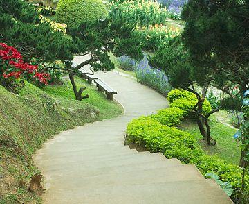 Landscaping In The Garden.